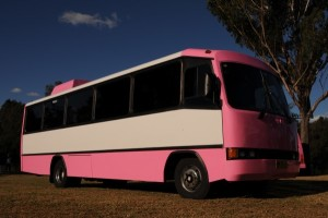 32 Seater Pink Party Bus
